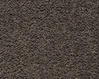 koberec-brunel